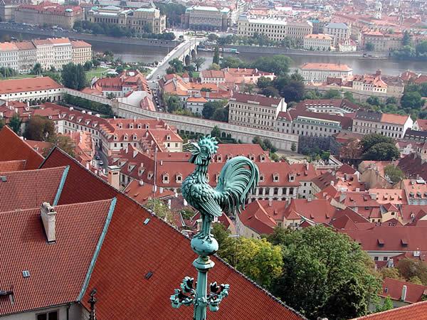 Kogucik i Praga