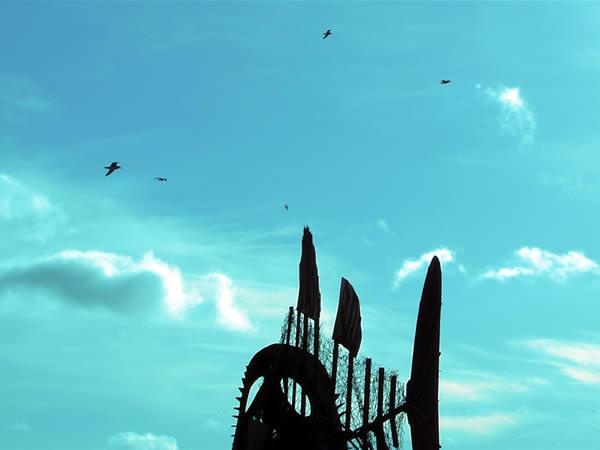 Mewa też lubi latać