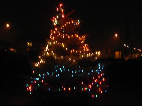Zdjęcie - Święta