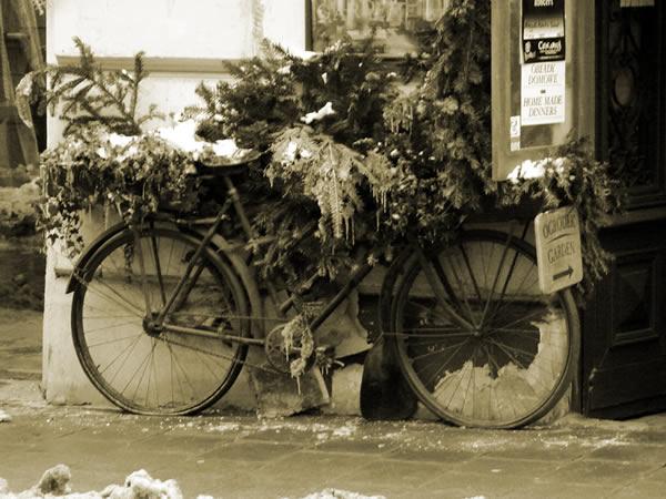 Pod choinką znalazłem rower