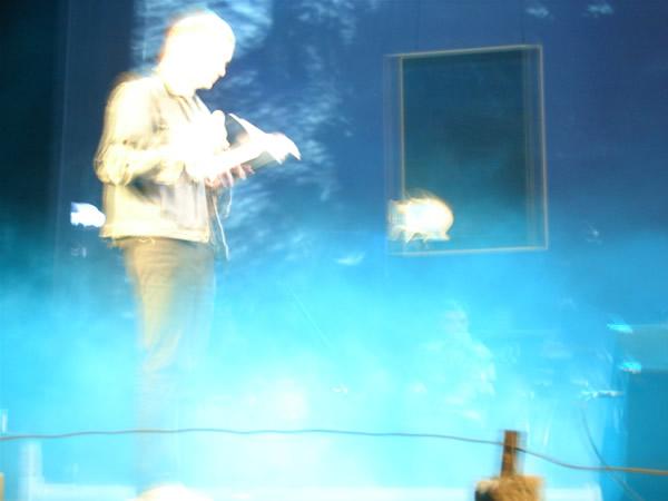Zdjęcie - Siwy dym
