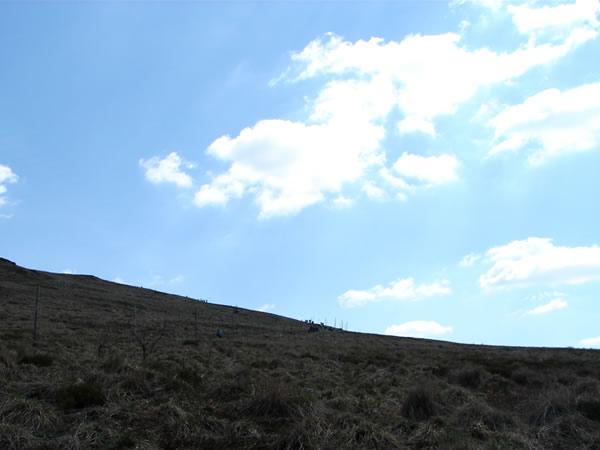 Zdjęcie - Wycieczka w góry