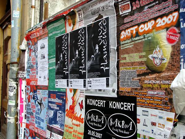 Zdjęcie - VIVA FLAMENCO - koncert w KAMFORZE