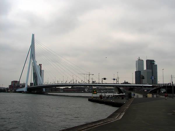 Zdjęcie - Rotterdam