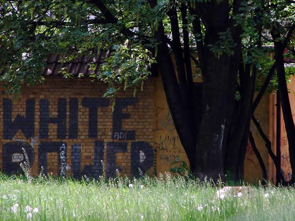 WHITE ROWER