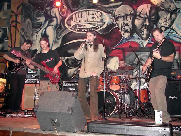 Zdjęcie - Koncert Madness