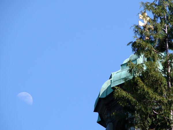 Zdjęcie - Księżyc nawet wylazł