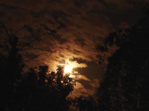 Troszkę księżyca