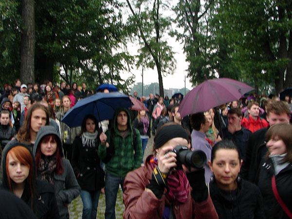 Parasolniki
