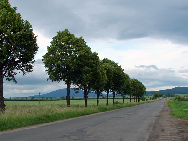 Zdjęcie - W drodze
