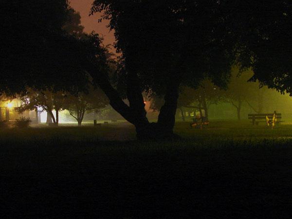 Zdjęcie - Zaparkować noc