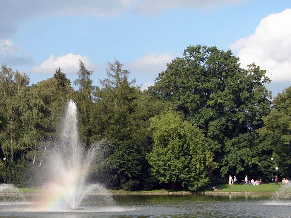 Zdjęcie - Tęcza w fontannie
