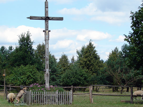 Kozy żrą kwiaty przy Jezusie