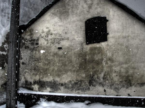 Zdjęcie - Nowy Rok