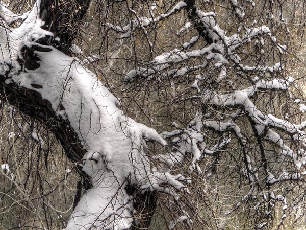 Zima w Osiecznej