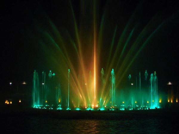 Zdjęcie - Zielono światłowo
