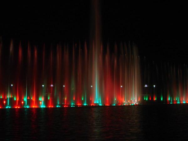 Zdjęcie - Czerwony, zielony, się mienią kolory