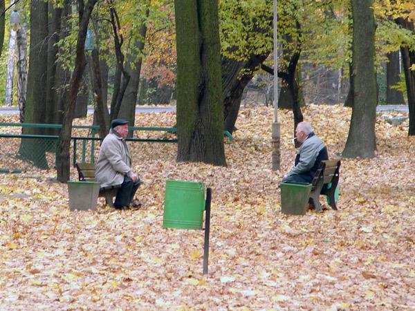 Zdjęcie - Starsi panowie dwaj
