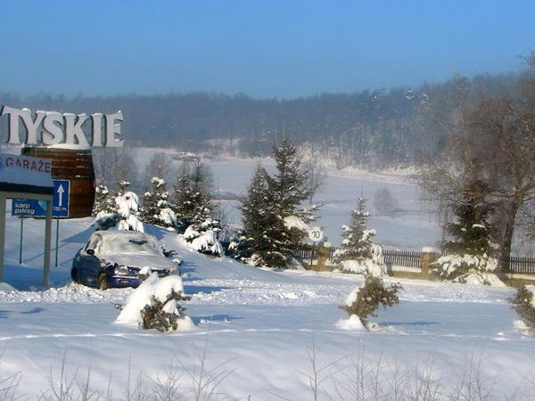 Zdjęcie - Przyszła zima