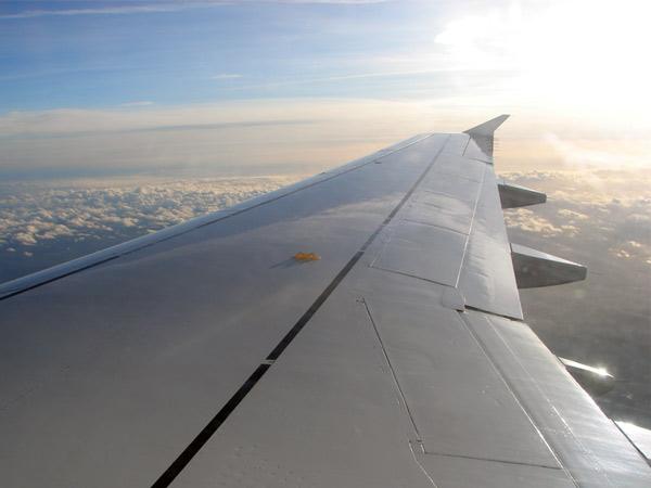 Zdjęcie - Znowu siedzenie przy skrzydle