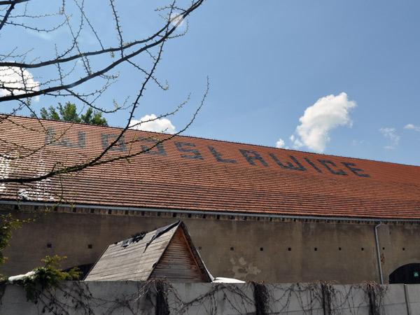Wojsławice na dachu
