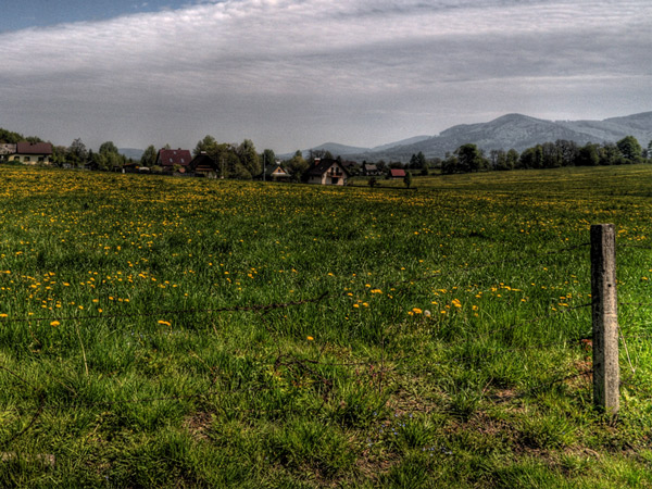 Zdjęcie - Łąka, góry, cisza