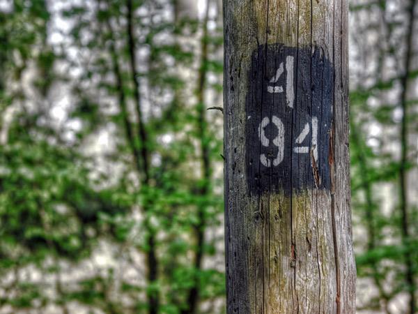 Zdjęcie - 4/94