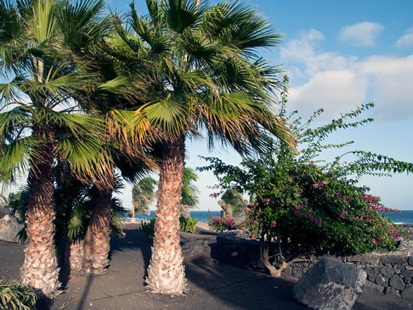 Spacer po wyspie, dodano: 2011-9-19