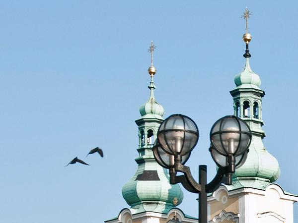 Zdjęcie - Dwa ptaki, dwie wieże