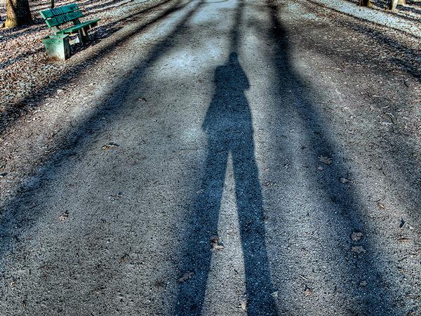 Zdjęcie - Spacer, Park Zachodni