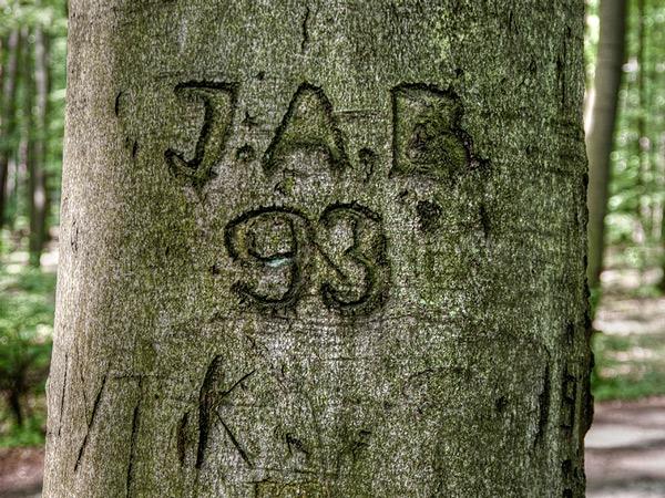 JAB 93?