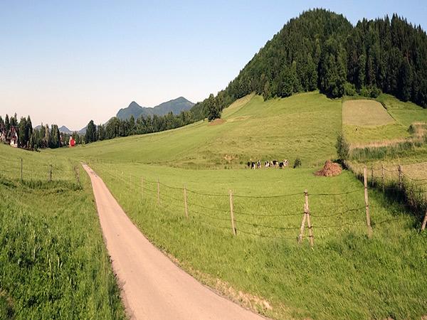 Zdjęcie - Trochę góry