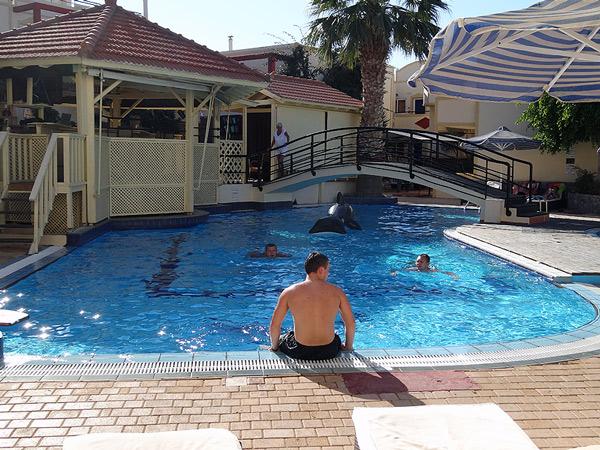 Orka w basenie
