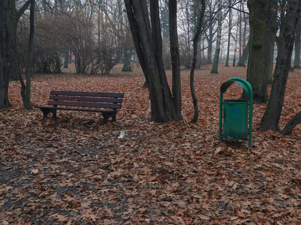 Zdjęcie - Łakwa i kosz bez HDR