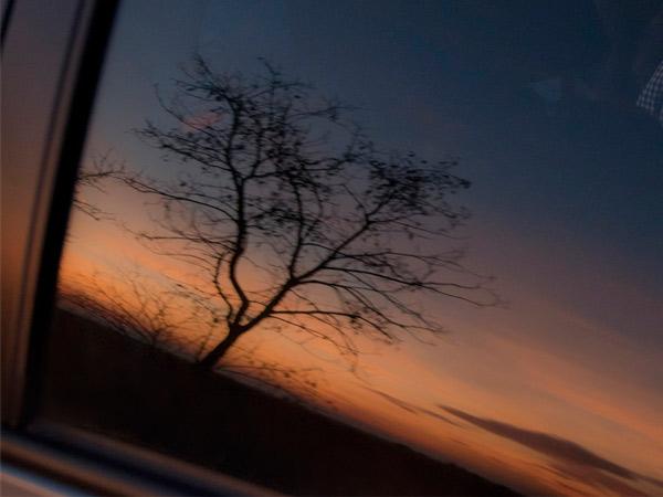 Zdjęcie - W szybie samochodu