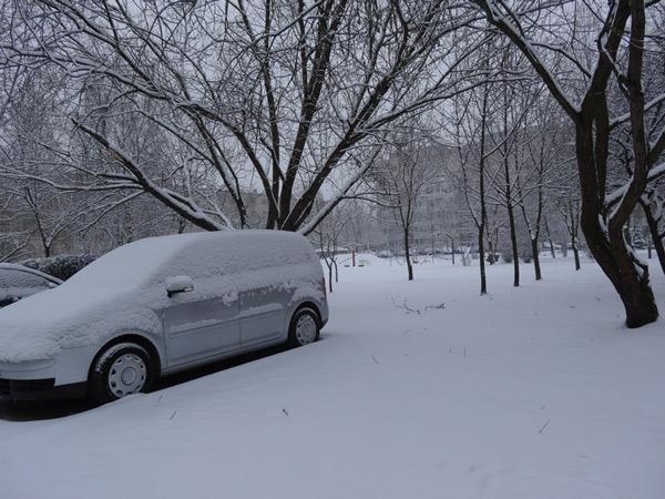 Śnieżny poranek