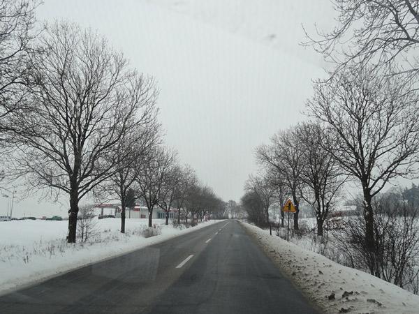 Nawroty zimy