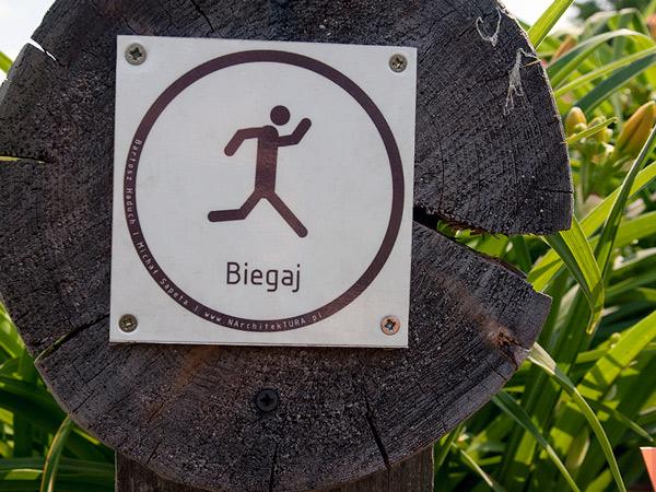 Biegnij do Arboretum w Wojsławicach