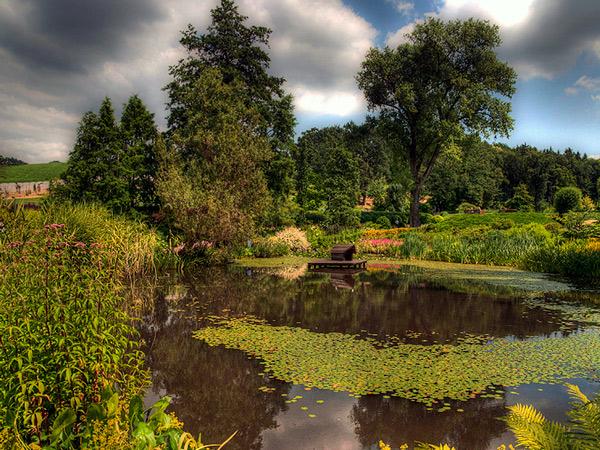 Zdjęcie - Arboretum w HDRze
