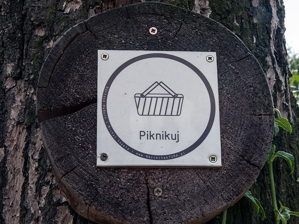 Zdjęcie - Piknikuj