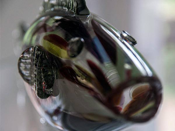 Zdjęcie - Czarna ryba