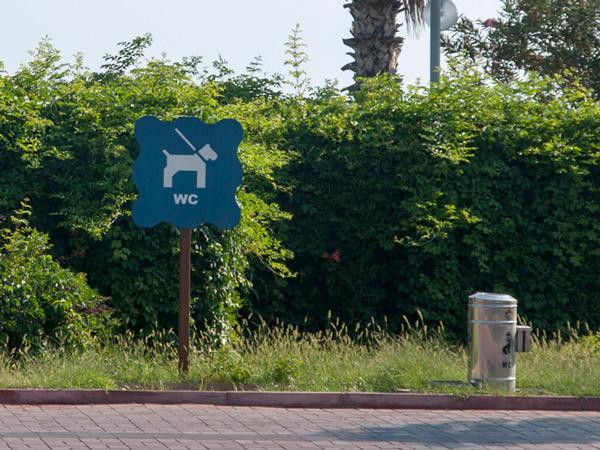 WC dog