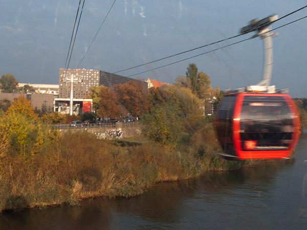 Zdjęcie - Polinka w ruchu