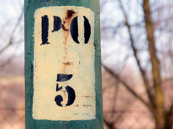 Zdjęcie - PO 5