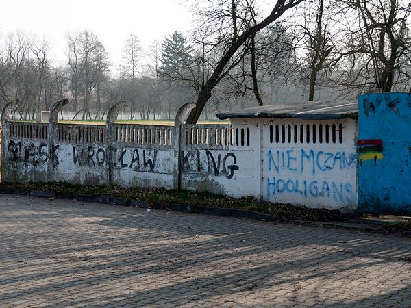 Zdjęcie - Śląsk Wrocław King