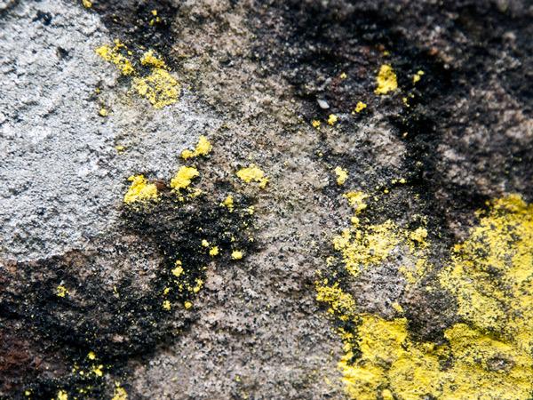 Skała - kolory