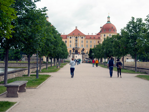 Zdjęcie - Pałac Moritzburg