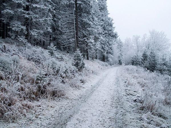 Tutaj śnieżnie