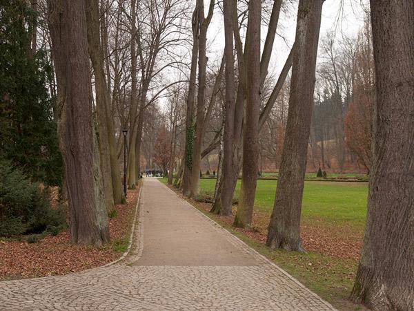 Zdjęcie - Park zdrojowy