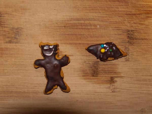 Zdjęcie - Niedźwiedź brunatny